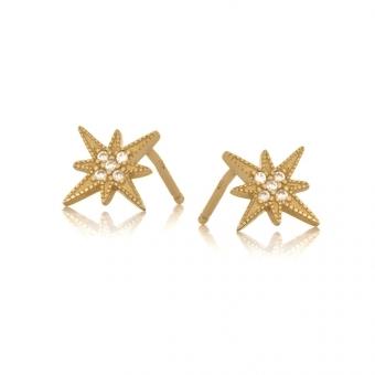 Kolczyki SKY srebrne pozłacane z gwiazdami